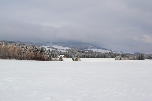 Petite balade hivernale aux Monts de Riaz