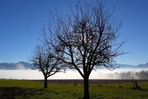 Ciel d'un bleu vif au-dessus de Sorens