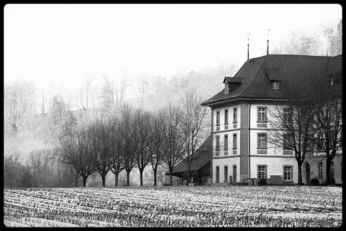 hauterive-monastere-3