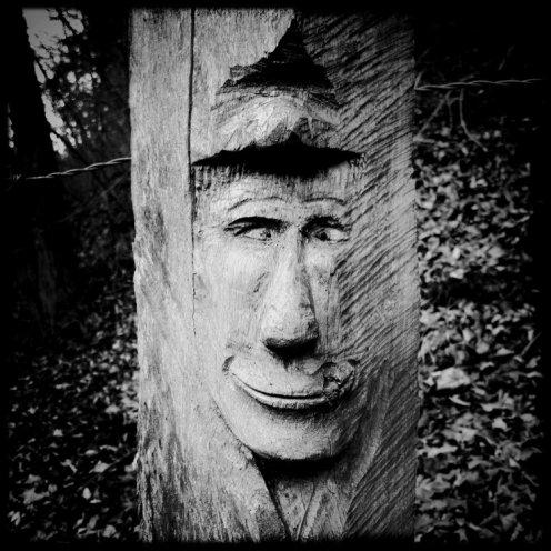 hauterive-visage-sculpte-1
