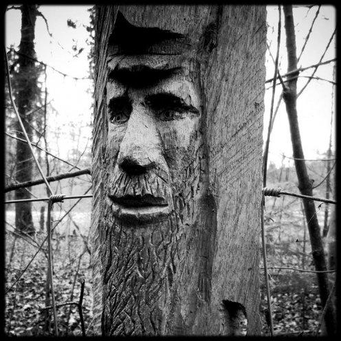 hauterive-visage-sculpte-4