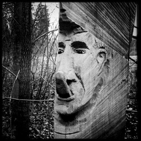 hauterive-visage-sculpte-5