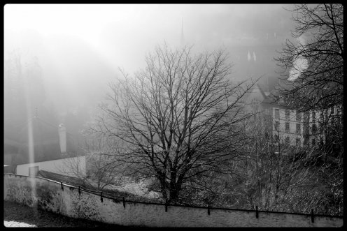 soleil-abbaye-hauterive