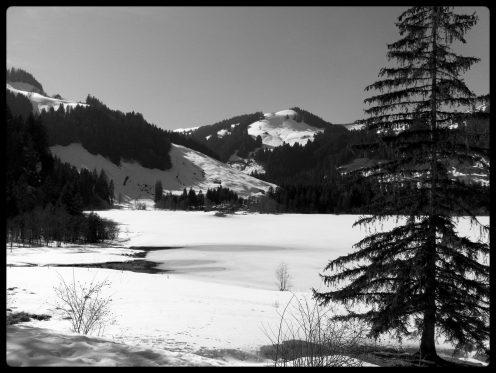 lac-noir-gele