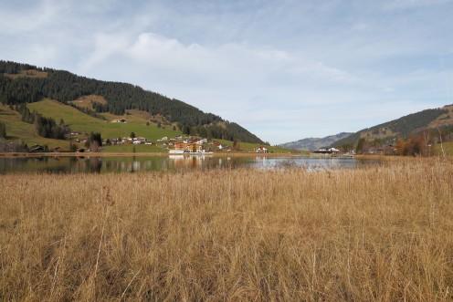 lac-noir-roseaux-c