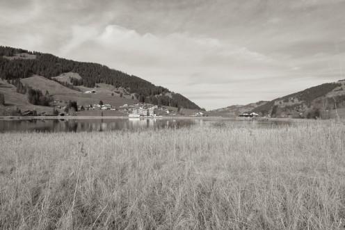 lac-noir-roseaux-m