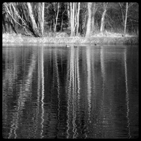 lac-perolles-reflets