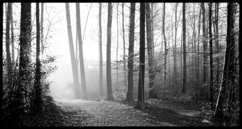 sentier-schoch-perolles